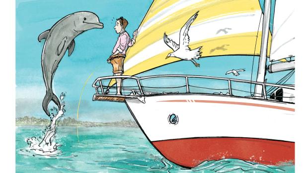 Passagemaker_Dolphin_Final_1