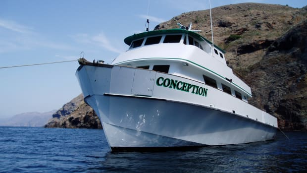 boats-Conception