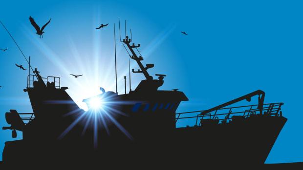 seagulls-boat-LR