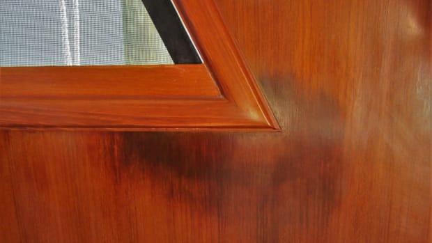 web_window veneer staining