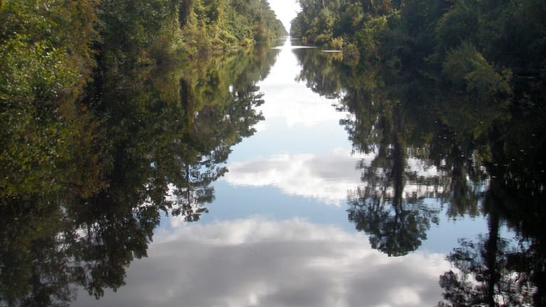 Dismal Swamp Canal Reopens in September (Video)