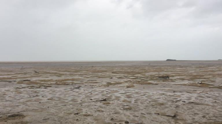 Hurricane Irma Sucks Away the Sea (Video)