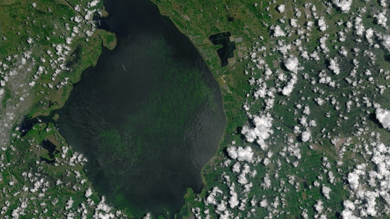 Army Corps approves plan that aims to reduce Florida algae blooms