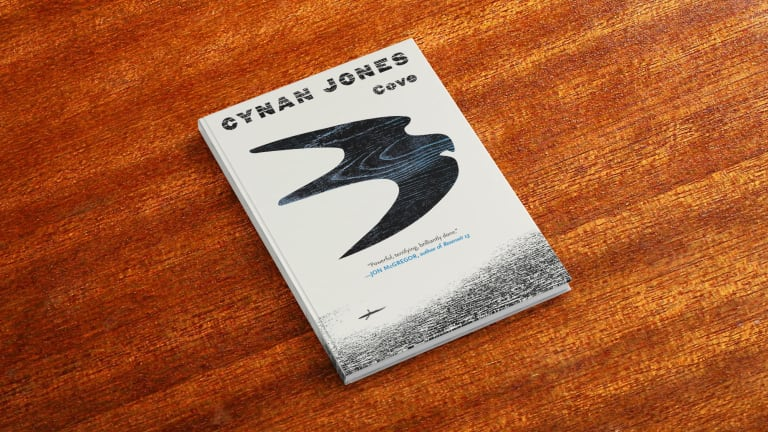 From the Captain's Bookshelf: Cynan Jones' Book, Cove
