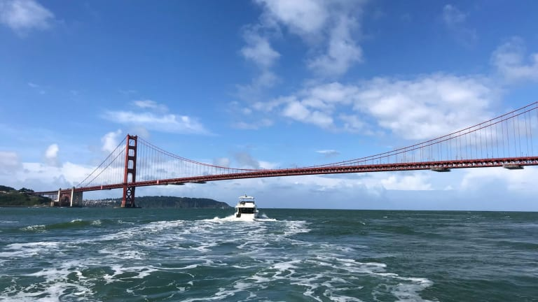Swift Pacific Adventure Continues