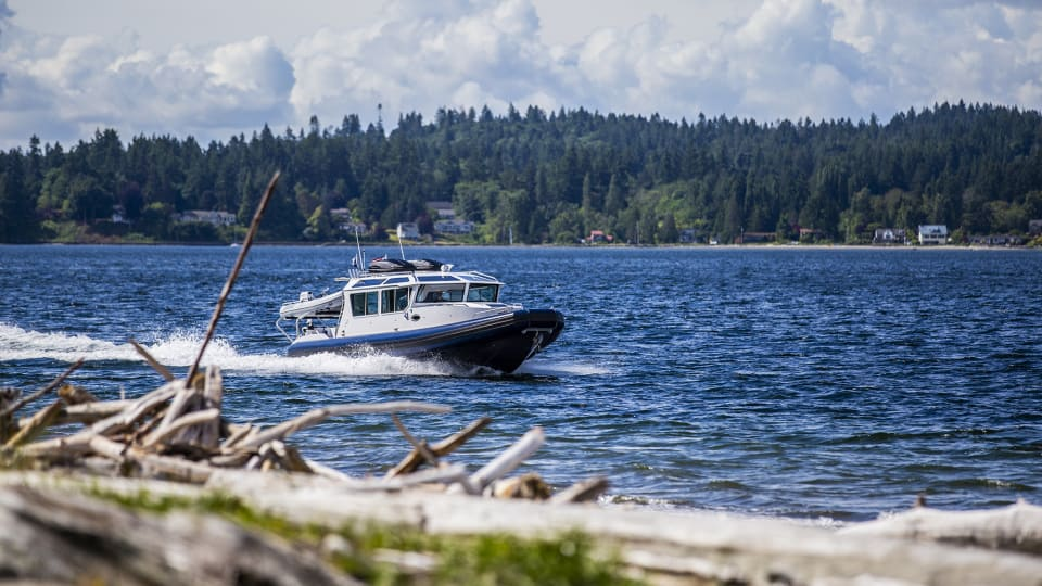 Life Proof 35 Full Cabin: Review & Sea Trial Report