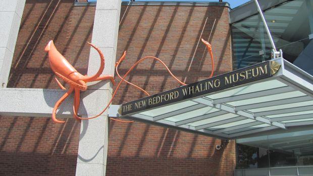 orange squid 1