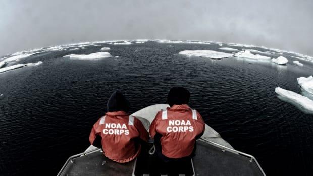 NOAA_arctic