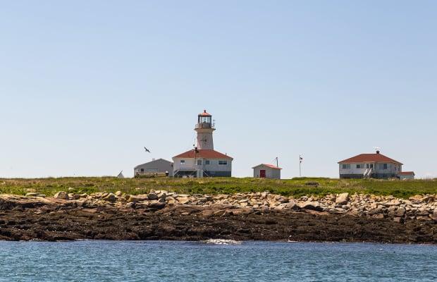 A Curious Fight: Machias Seal Island