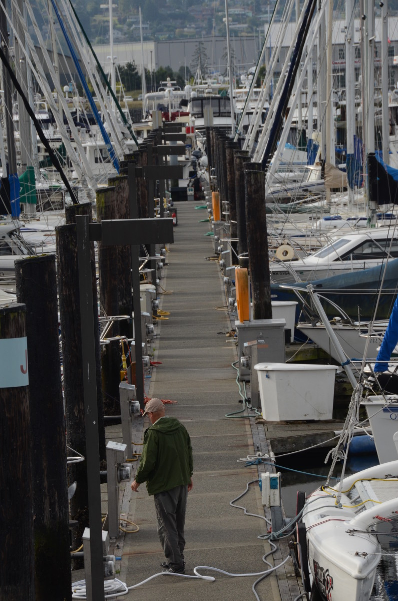 Concrete docks would be phased out under a new environmental proposal.