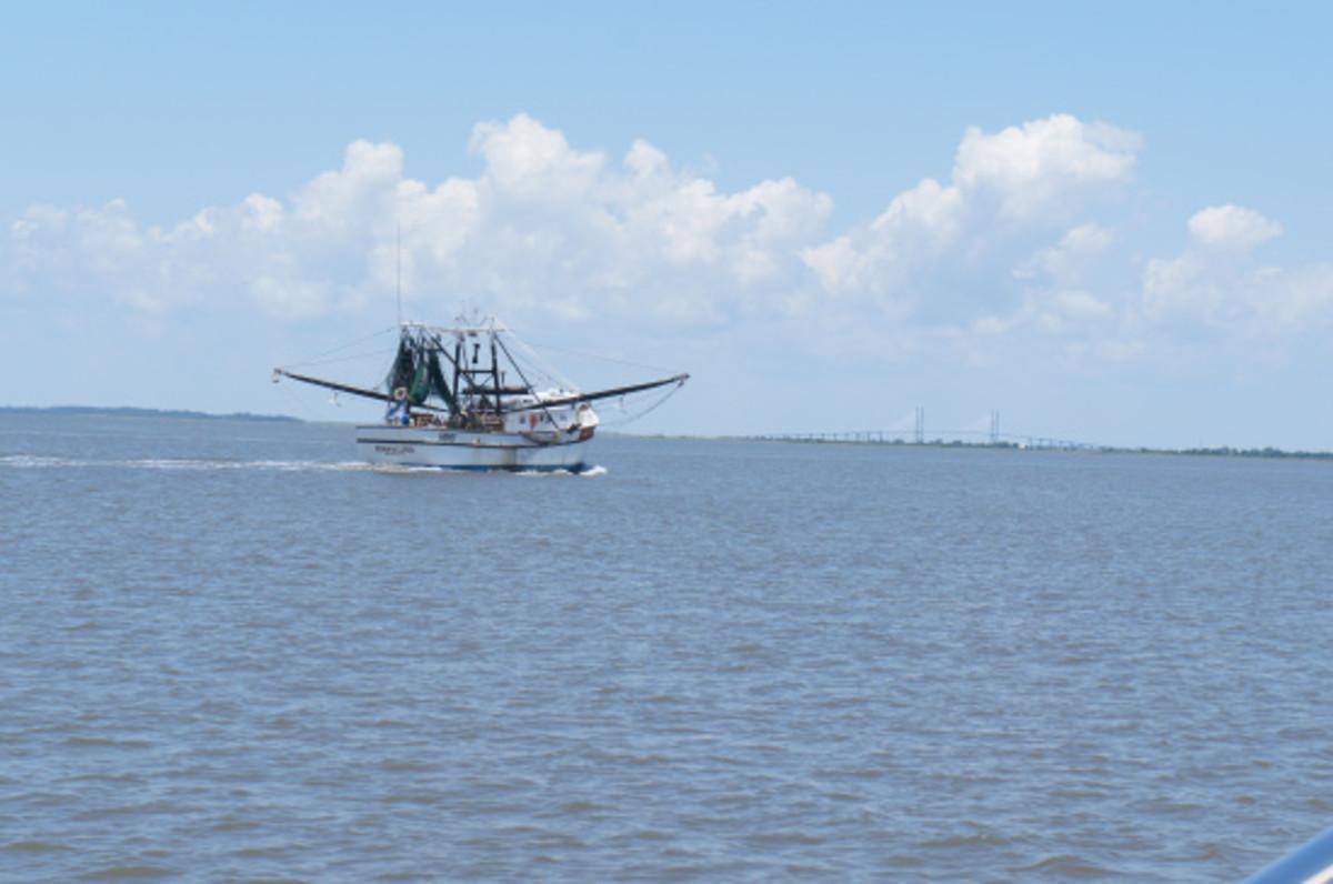 A fishing boat trawl' the ICW.