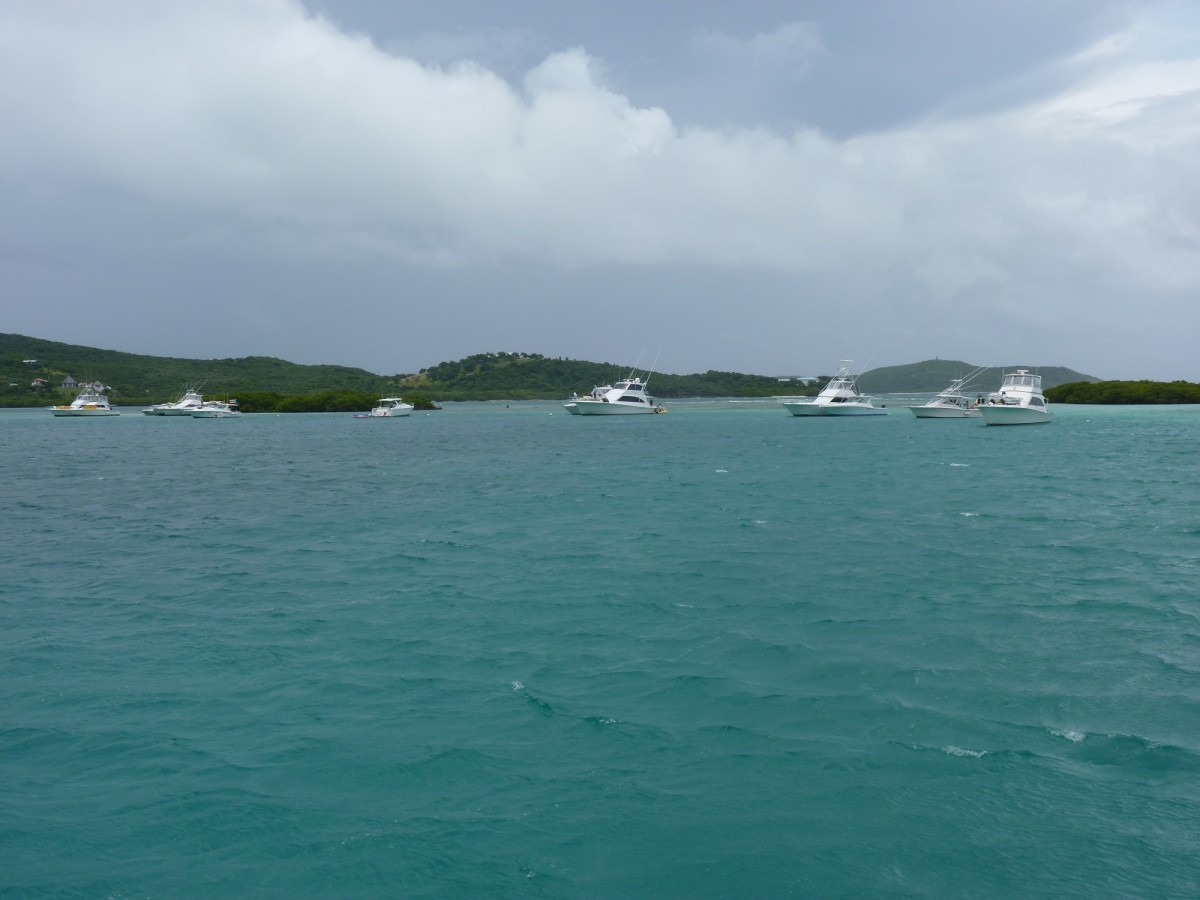 """This is our view on Saturday. It's a holiday weekend here and the local """"Puerto Rican Navy"""" has arrived. Sport Fishes are the vessel of choice. They tend to moor these boats with the stern into the wind."""
