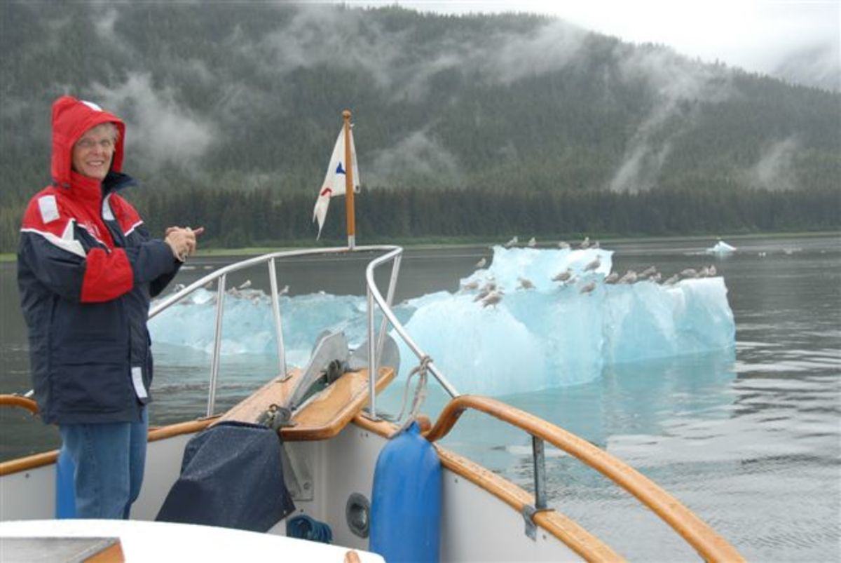 Bergs in Tracy Arm
