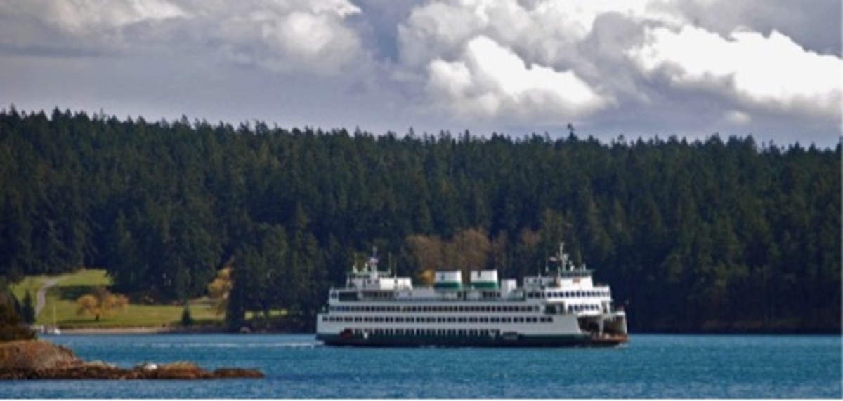 The crew of the Washington State ferry Hyack was found to be at fault in a collision that sunk a sailboat in September. Investigators suggested installing data recorders in all ferries.