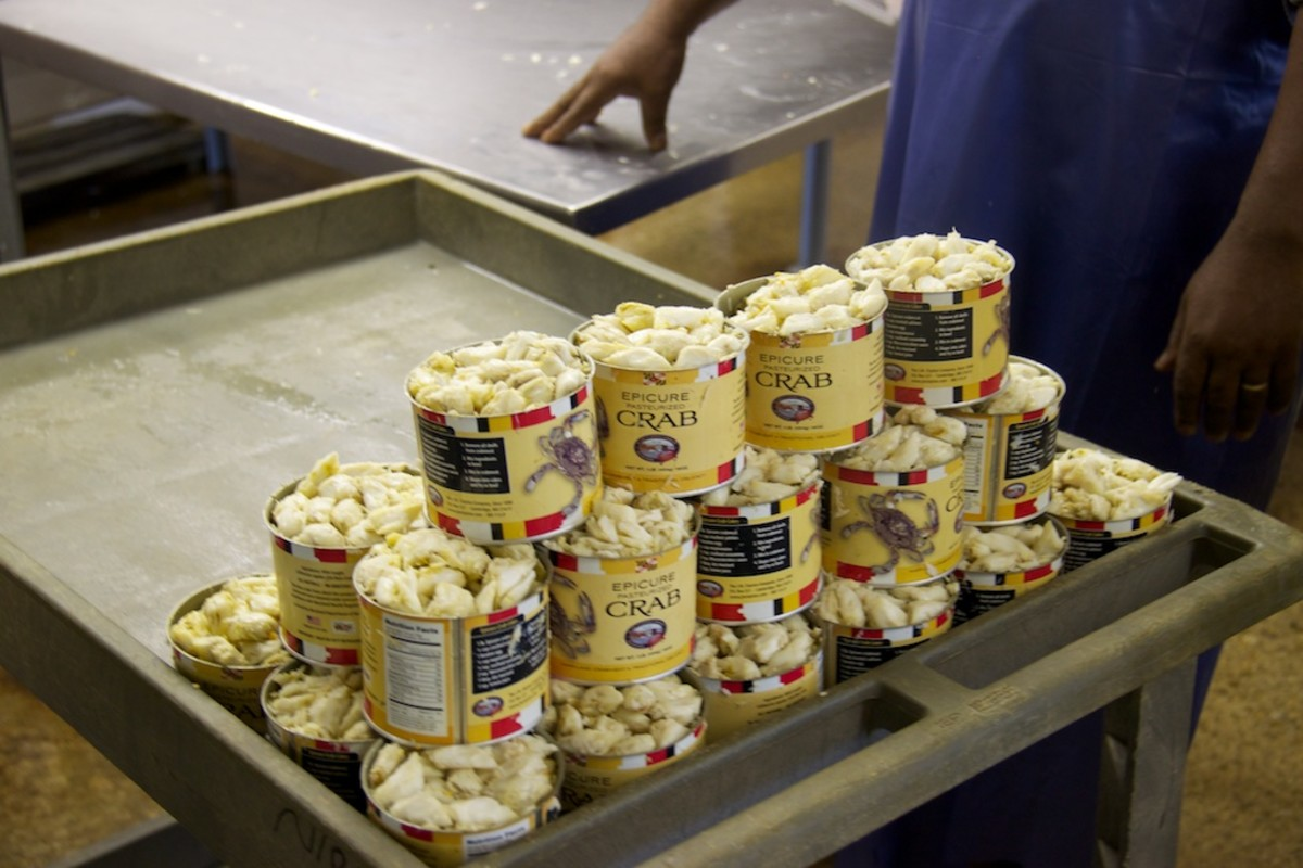 Cans of jumbo lump crabmeat await pasteurization at J.M. Clayton Company in Cambridge, Maryland.