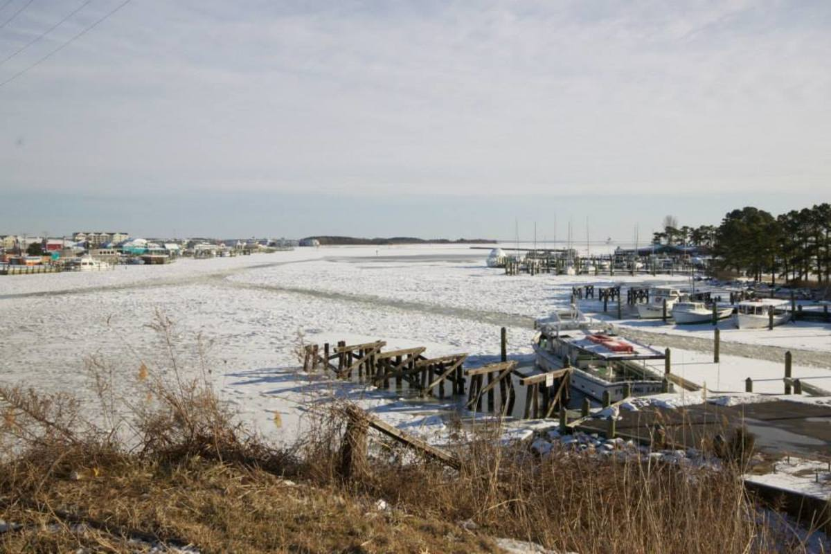 JPG: Kent Narrows, which connects Eastern Bay and the Chester River on Maryland's Eastern Shore, had a thick coating of ice on January 29.