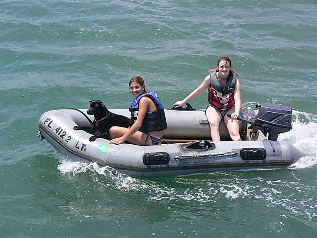 Dog is Grace, rescued at Thanksgiving! Daughter brought her home even though we already had a dog knowing the shelter was closed for four days over Thanksgiving, and that we would be hooked by then. She knows us too well. Conniving! From Paul Lawrence, whose boat is Boat is Passage. Palm Cove Marina, Jacksonville Beach.