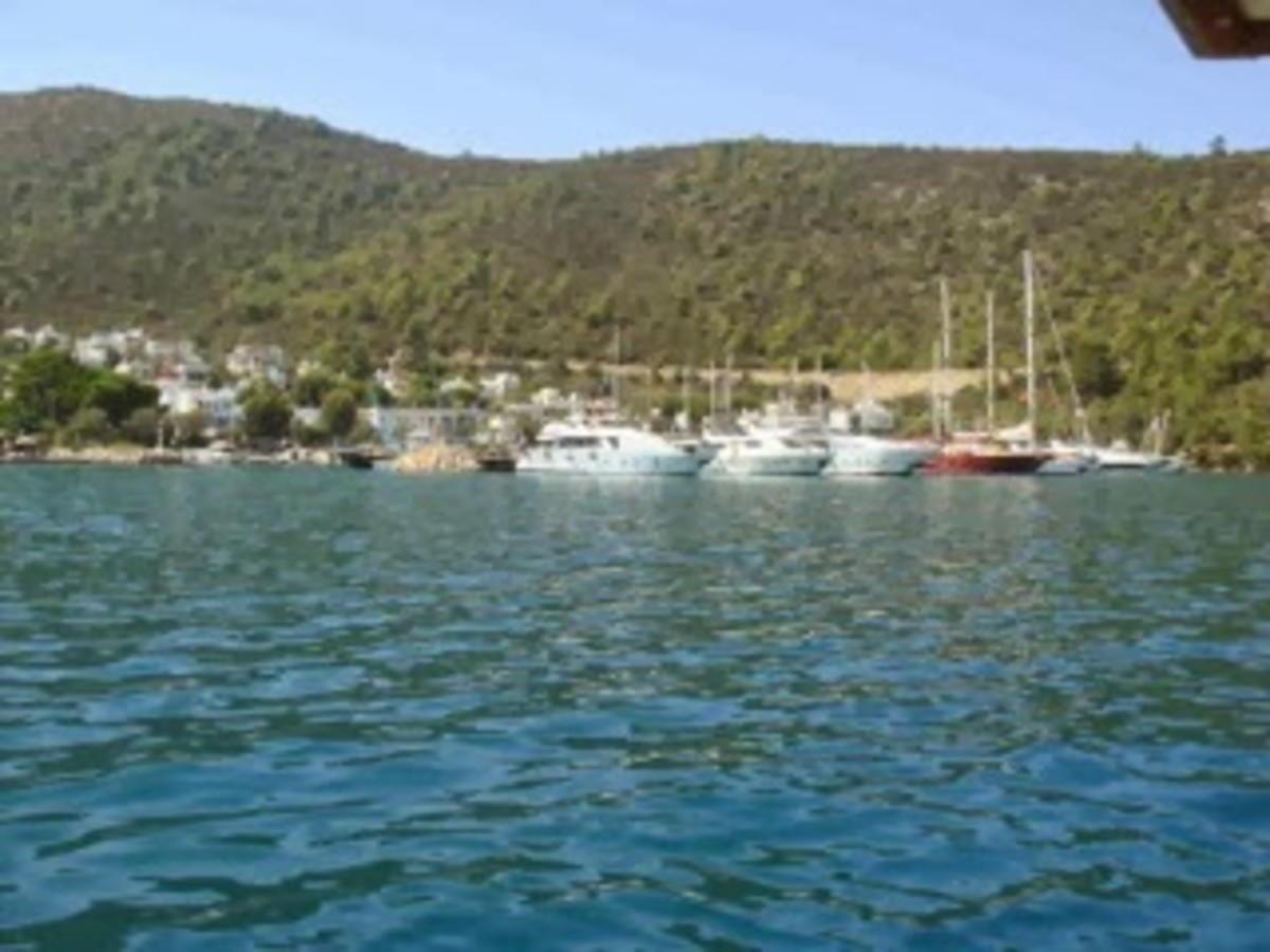 Our anchorage in Torba.