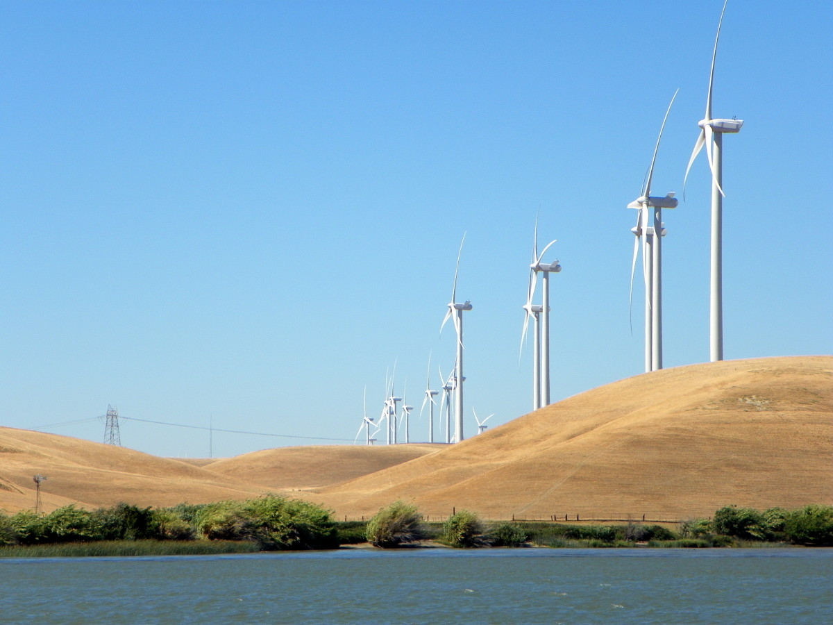 Wind Turbine line the Sacramento River near Rio Vista to take advantage of the steady Delta breezes. Nearby Sherman Island is a mecca for kite boarders and wind surfers.