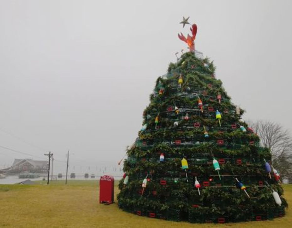 Lobster_trap_Christmas_tree_Rockland_Maine_2014-cPanbo-thumb-465xauto-10546