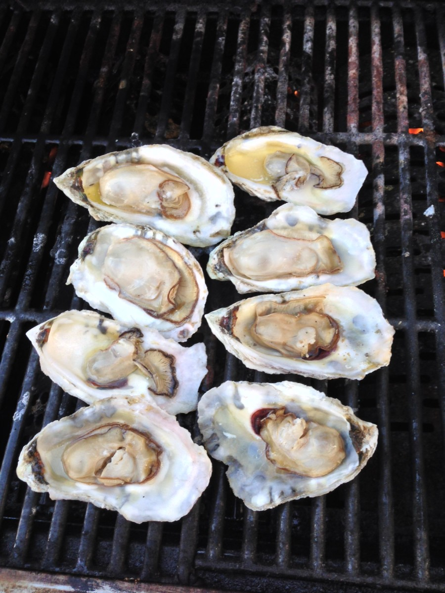Roasting oysters is a fine supplement to sock-burning festivities. (Photo by Gary Reich)