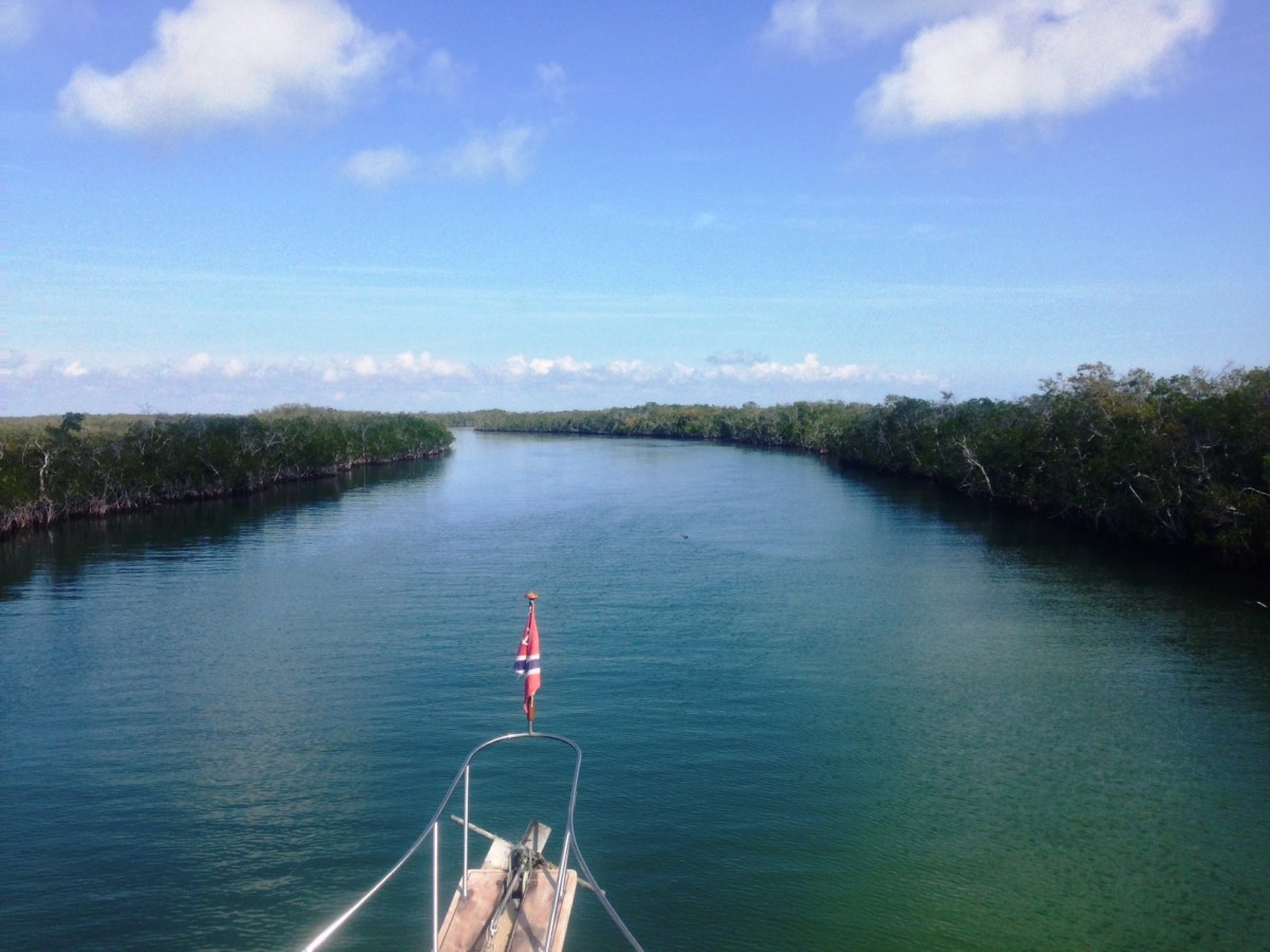 Cruising the ICW Mangroves.