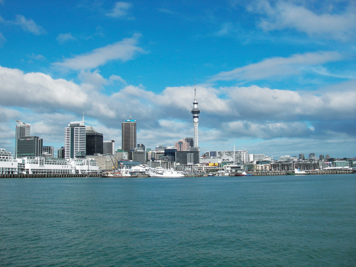 AucklandOpti 010-p17uft2vet9g21am61q3altotgk