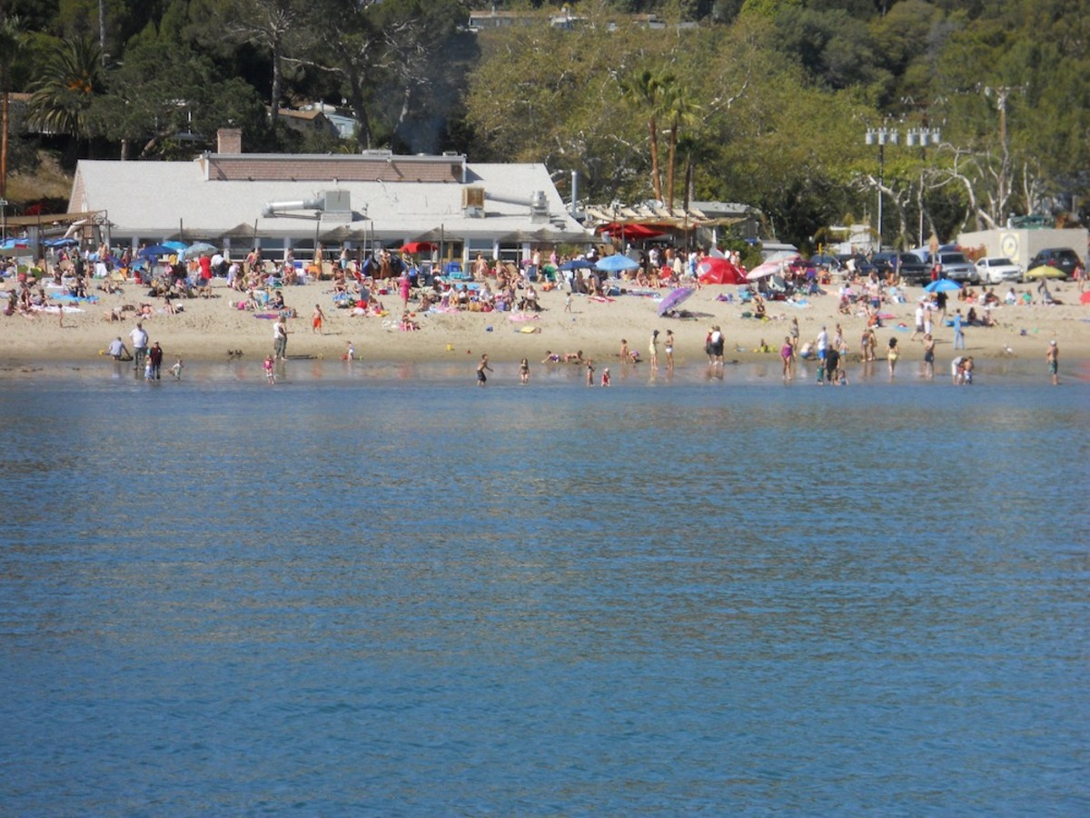 Paradise Cove Beach Café in full swing on a sunny day.