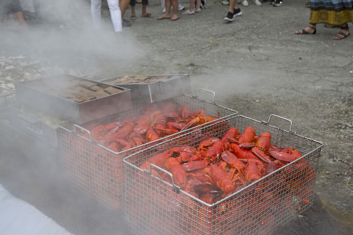 New England-style clambake with lobster.