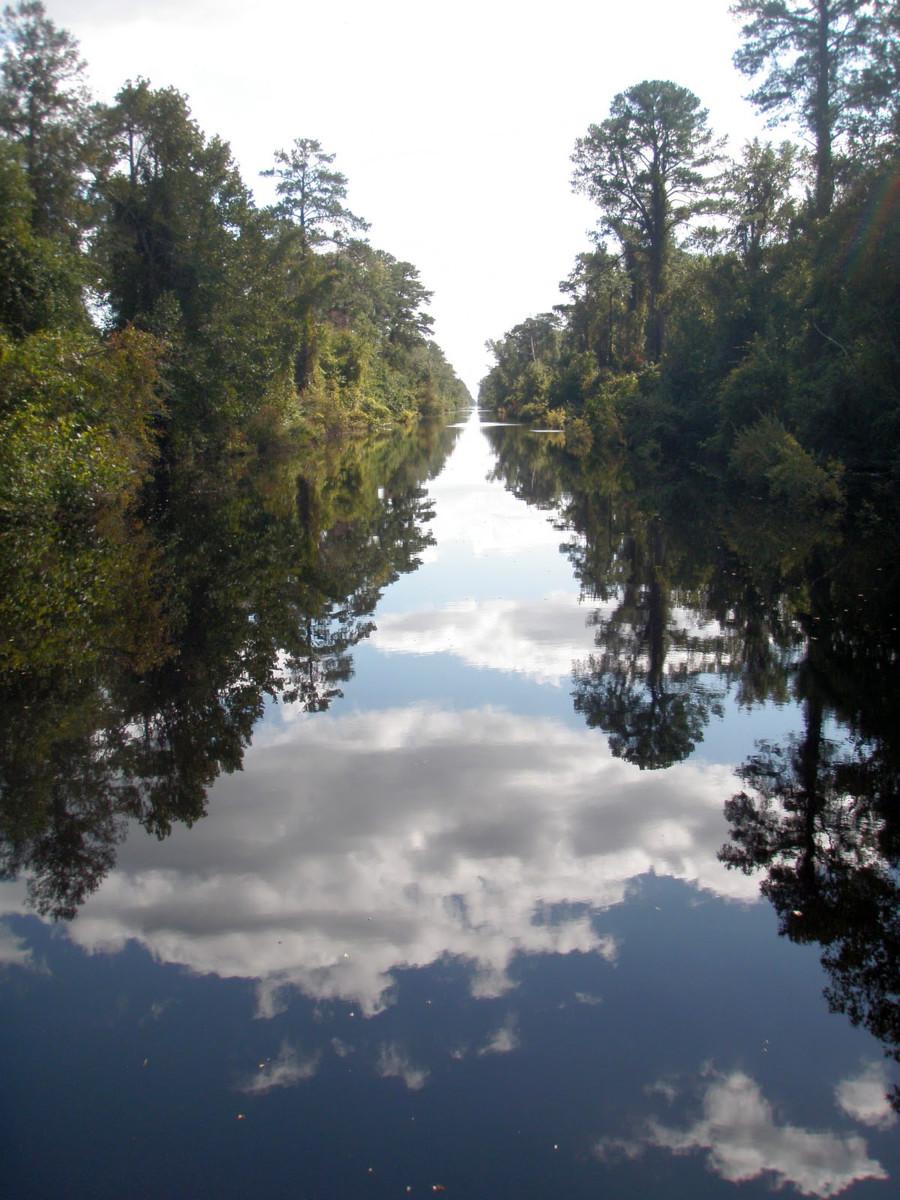 Dismal Swamp Canal Reopens In September Video Passagemaker