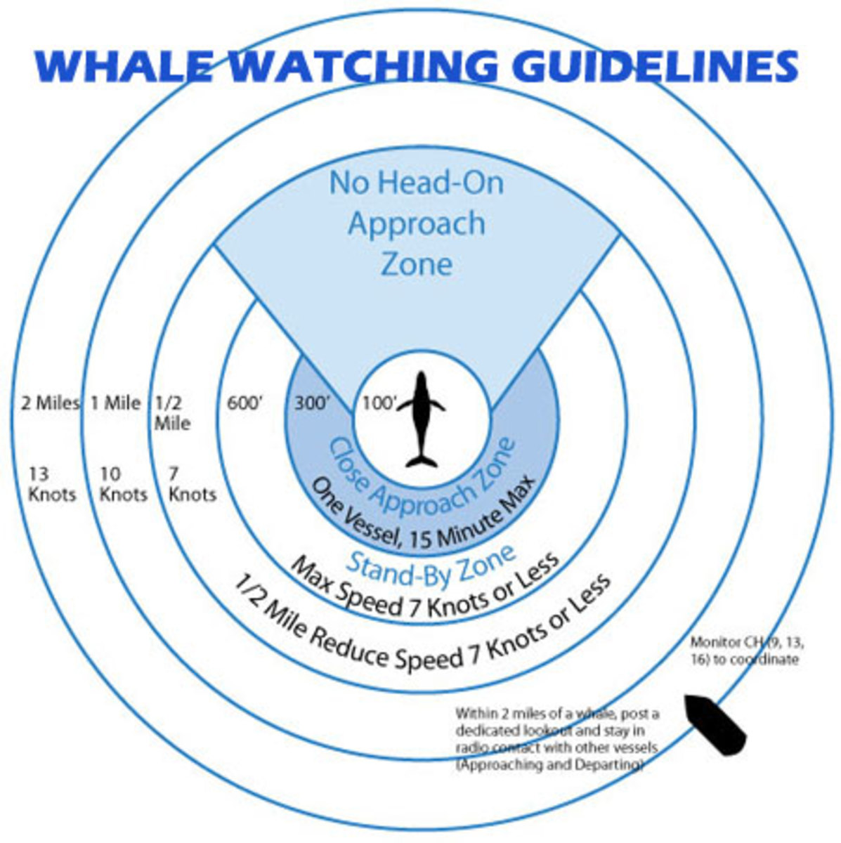A NOAA guide to whale watching.
