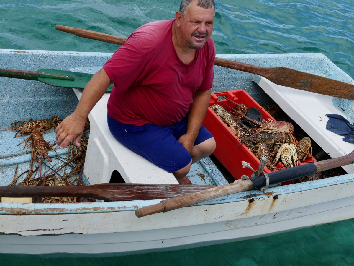 Park Ranger at Cayo Campos offers a gift of lobsters.