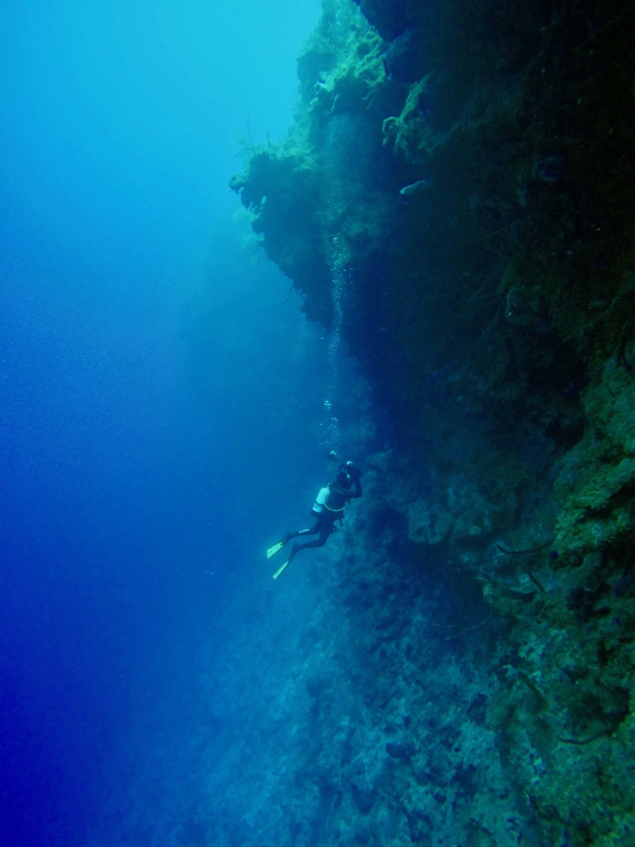 Diving the reefs off the south coast of Cuba.