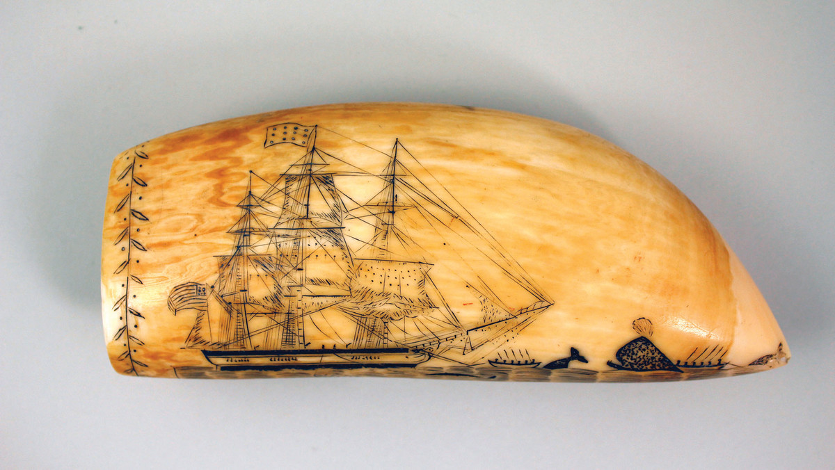 The New Bedford Whaling Museum sports the largest scrimshaw collection in the world.
