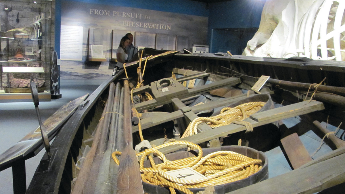 Original whaleboat displayed next to a sperm whale skeleton to show scale.
