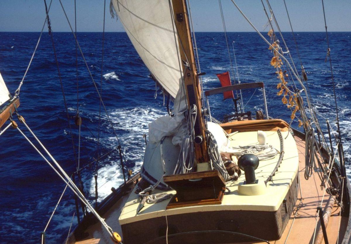 A portrait of Alicetaken by Ben Ellison on a cruise up the Atlantic seaboard.