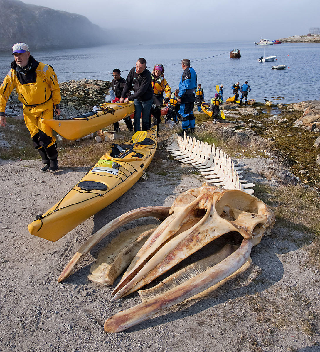 Shore visits in Greenland are rarely lacking fascinations