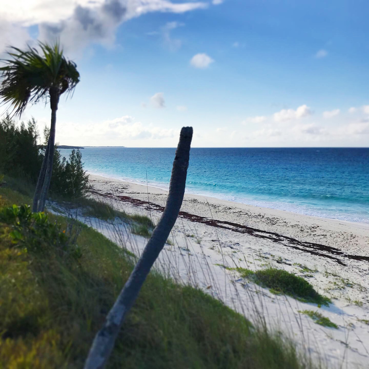 The windward side of Great Guana Cay.
