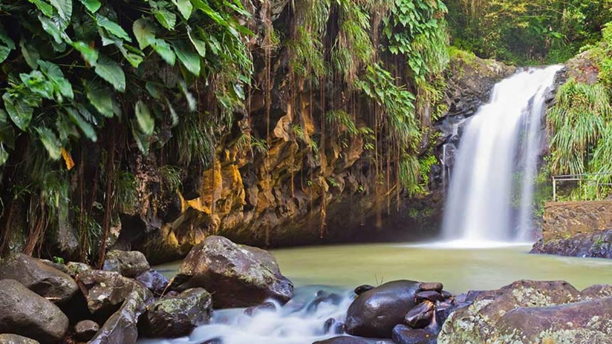 grenada_annandale-falls