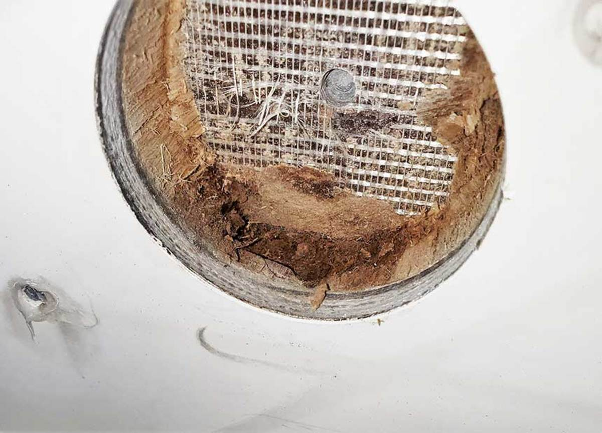 This balsa core has started to decompose from extended exposure to moisture from a leaking fitting. Left undiagnosed, the damage would become extensive. Without any visible indication, a moisture meter would be the only way to discover the problem.
