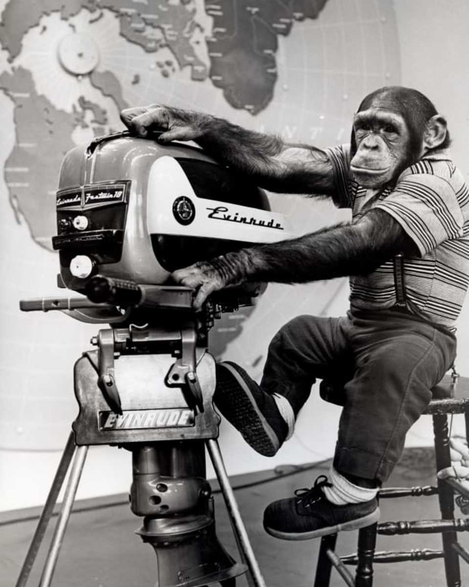 Zippy the Chimp was all the rage during the 1950s. He appeared on the Ed Sullivan Show, the most popular variety program on TV at the time. Obviously, Zippy made at least one promotional appearance on behalf of Outboard Marine Corporation as well.