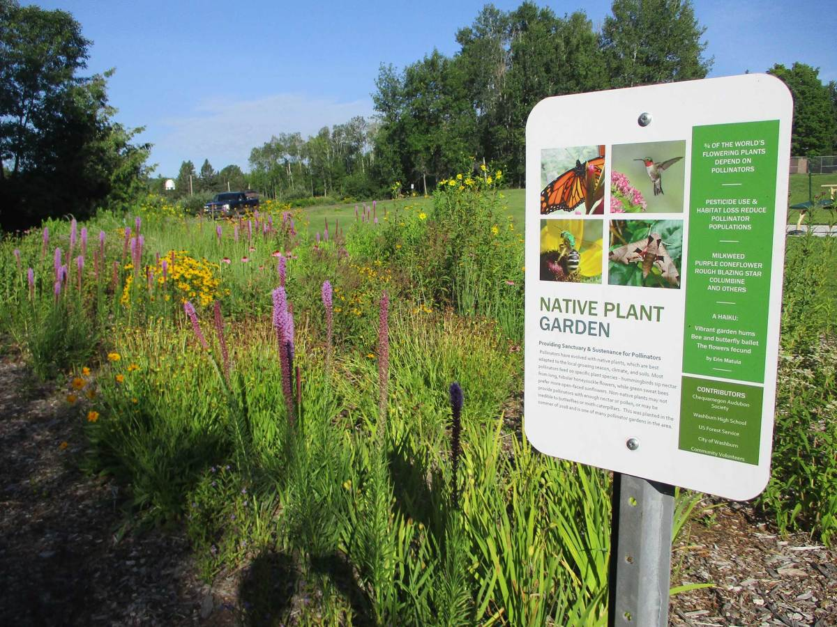 The Washburn walking trail winds among beaches, bluffs, forests and this native plant garden, showing the tight-knit community's commitment to environmental stewardship.