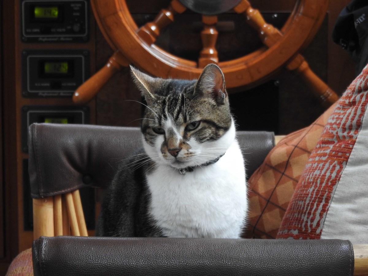 """Life aboard the Island Gypsy """"Danny Boy"""""""