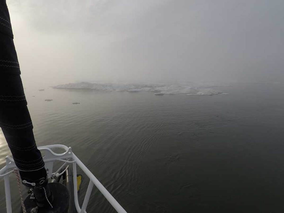 Navigating through ice and fog kept the DogBark! crew on their toes in the Northwest Passage.
