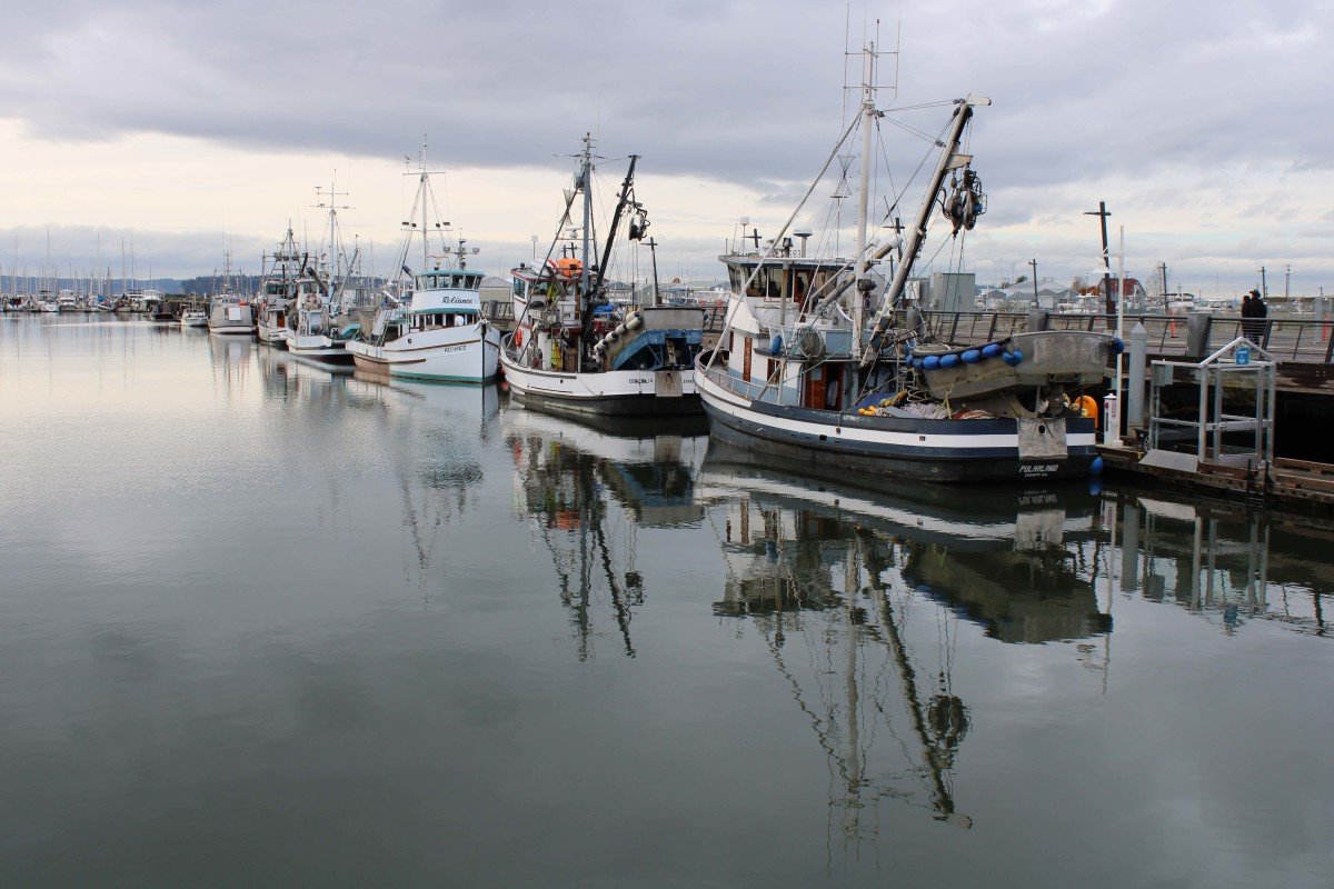 Calm conditions at the award-winning Port of Everett find a quiet dichotomy of private motoryachts and working vessels.